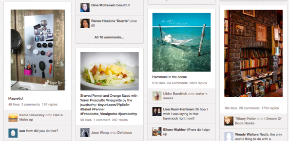 "A single-view sample of Pinterest users ""Pins"""